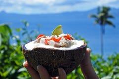 Alimento Kokoda do Fijian contra a paisagem tropical da ilha Fotografia de Stock