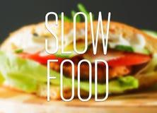 Alimento lento Foto de archivo libre de regalías