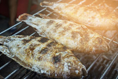 Alimento locale tailandese - il sale delizioso fresco Crusted il pesce arrostito nel mercato di strada Fotografie Stock Libere da Diritti