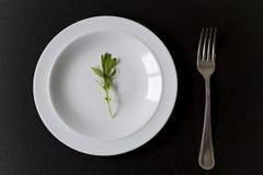 Alimento mínimo em um prato foto de stock