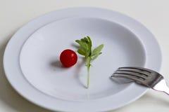 Alimento mínimo em um prato imagens de stock royalty free