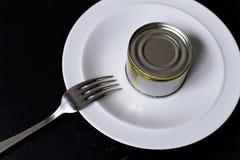 Alimento mínimo em um prato imagem de stock