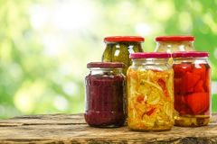 Alimento marinato casalingo Fotografia Stock