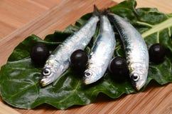 Alimento mediterrâneo Fotografia de Stock
