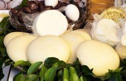 Alimento mediterrâneo tradicional Fotos de Stock Royalty Free