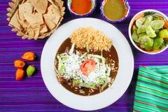 Alimento messicano dei enchiladas della talpa con le salse di peperoncino rosso Immagine Stock Libera da Diritti