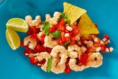 Alimento mexicano do camarão de Ceviche de Camaron no azul imagens de stock royalty free