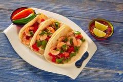 Alimento mexicano dos tacos do camarão de Camaron no azul imagem de stock