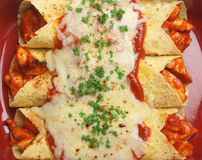 Alimento mexicano, Enchiladas da galinha Fotos de Stock