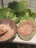 Alimento misturado cozinhado imagem de stock royalty free