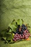 Alimento multicolor de la uva Fotografía de archivo libre de regalías