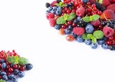 alimento Nero-blu e rosso su un bianco Mirtilli maturi, uva passa, lamponi, fragole con la menta su un fondo bianco B mista Fotografia Stock