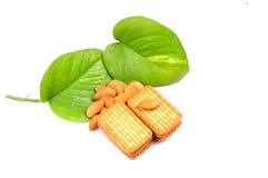Alimento Nutritious foto de stock