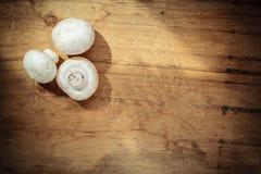 Alimento O branco fresco cresce rapidamente champigonons Imagem de Stock