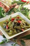 Alimento orientale Fotografie Stock Libere da Diritti