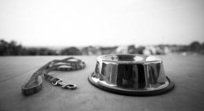Alimento para animales domésticos en un cuenco blanco y negro Fotos de archivo