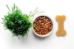 Alimento para cães seco na bacia na opinião superior do fundo branco imagem de stock