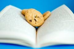 Alimento para pensamentos, bolinhos em um livro Fotografia de Stock Royalty Free