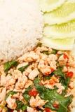 Alimento picante del estilo tailandés Imagen de archivo libre de regalías