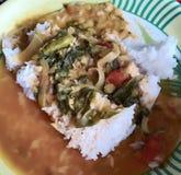 Alimento picante indio imagen de archivo