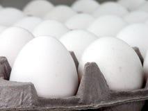 Alimento: Primo piano dell'uovo Fotografie Stock Libere da Diritti
