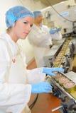 Alimento processado em umas latas Fotografia de Stock