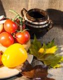 Alimento rústico Fotos de Stock Royalty Free