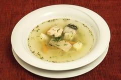 Alimento russo tradizionale immagine stock