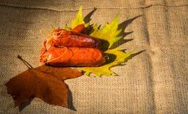 Alimento rustico Fotografia Stock Libera da Diritti