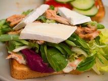 Alimento - sanduíche delicioso da galinha e do camembert Fotos de Stock Royalty Free
