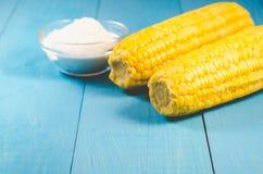 Alimento sano Cereale bollito appetitoso con sale su un fondo blu Copi lo spazio immagini stock