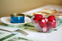 Alimento sano con il ravanello, il tonno ed il pane tostato Immagine Stock Libera da Diritti
