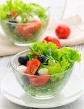 Alimento sano - insalata con la mozzarella, rucola fotografie stock libere da diritti