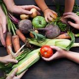 Alimento sano organico fresco, verdure crude di disintossicazione fotografia stock libera da diritti