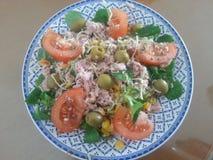 Alimento saudável, dieta mediterrânea, curso frio fotos de stock royalty free
