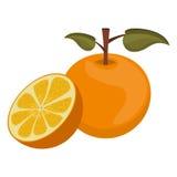 Alimento saudável do fruto ilustração stock