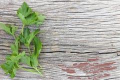 Alimento saudável Grupos da salsa ou grupos do coentro em uma placa de madeira Conceito: Ervas, temperos especiais Produtos natur Fotografia de Stock