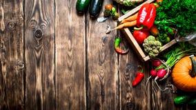 Alimento saudável Vegetais orgânicos em uma caixa velha Imagem de Stock