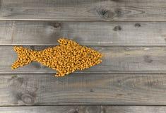 Alimento seco sob a forma dos peixes Fotos de Stock