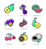 Alimento sin procesar Conjunto del icono de la fruta Fotografía de archivo