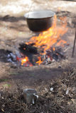 Alimento su fuoco nave Fotografie Stock