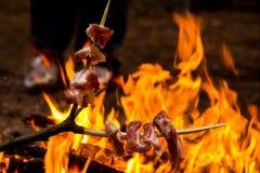 Alimento sul fuoco di accampamento Immagini Stock