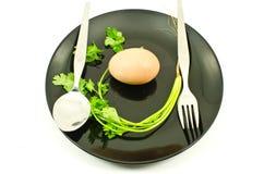 Alimento sul piatto isolato. Fotografia Stock Libera da Diritti