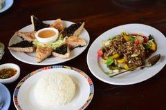 Alimento tailandés delicioso Fotografía de archivo libre de regalías