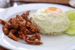 Alimento tailandés - fritada #6 del Stir Foto de archivo libre de regalías