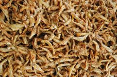 Alimento tailandês, fritada de peixes Fotografia de Stock Royalty Free