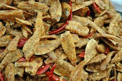 Alimento tailandês, fritada de peixes Foto de Stock Royalty Free