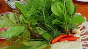 Alimento tailandês nativo fotografia de stock royalty free