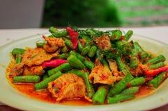 Alimento tailandês picante Imagem de Stock Royalty Free