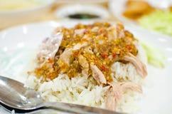 Alimento tailandese del pollo con riso. Immagini Stock Libere da Diritti
